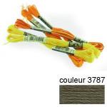DMC 117 mouliné, fils à broder - couleur 3787