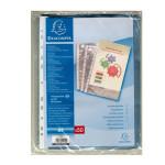 Pochettes transparentes perforées Lisses en polypropylène par 50