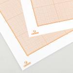 Papier millimétré Canson 100g 50 x 65cm bistre